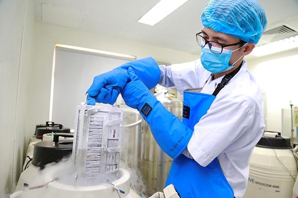 Tế bào gốc máu dây rốn được lưu trữ