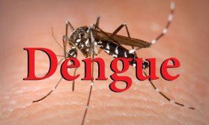 giai đoạn bệnh sốt xuất huyết