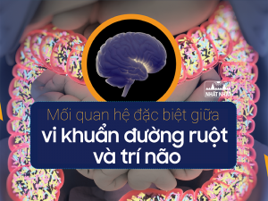 vi khuẩn đường ruột và trí não
